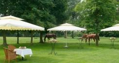 Fantastisch Pensioensviering nabij Budingen